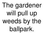 the gardener will pull up weeds by the ballpark
