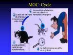 mgc cycle