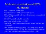 molecular associations of ifta m mengel