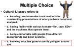 multiple choice4