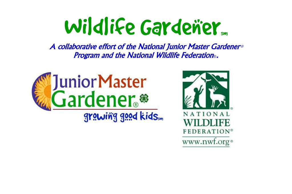 wildlife gardener sm l.