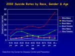 2002 suicide rates by race gender age