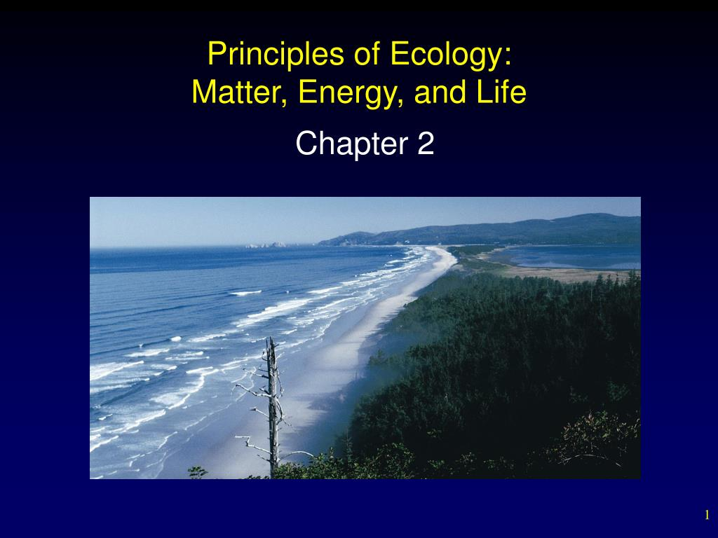 principles of ecology matter energy and life l.
