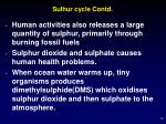 sulhur cycle contd