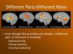 different parts different roles