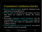 commitment validation batches