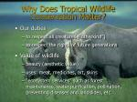 why does tropical wildlife conservation matter