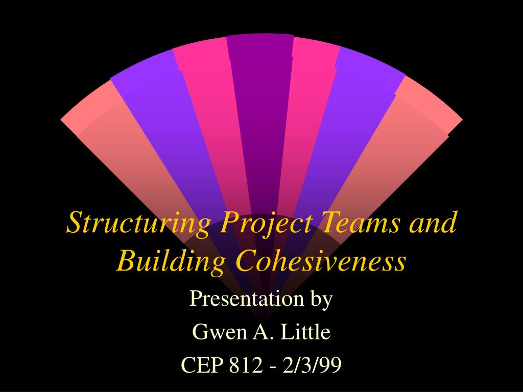 structuring project teams and building cohesiveness l.