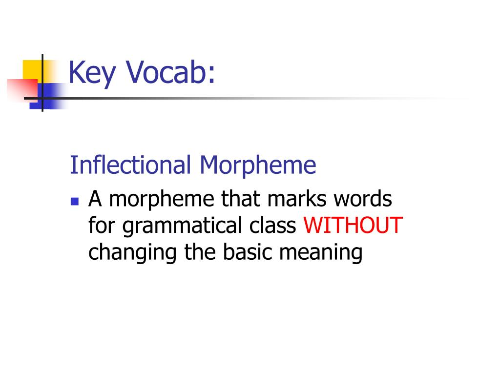 Key Vocab: