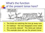 what s the function of the present tense here