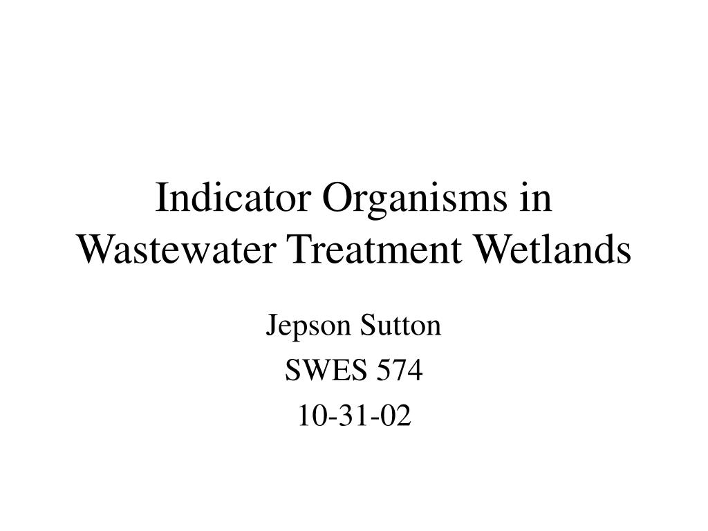 indicator organisms in wastewater treatment wetlands l.