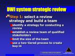dwi system strategic review41