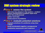 dwi system strategic review44