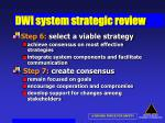 dwi system strategic review45
