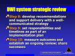 dwi system strategic review46