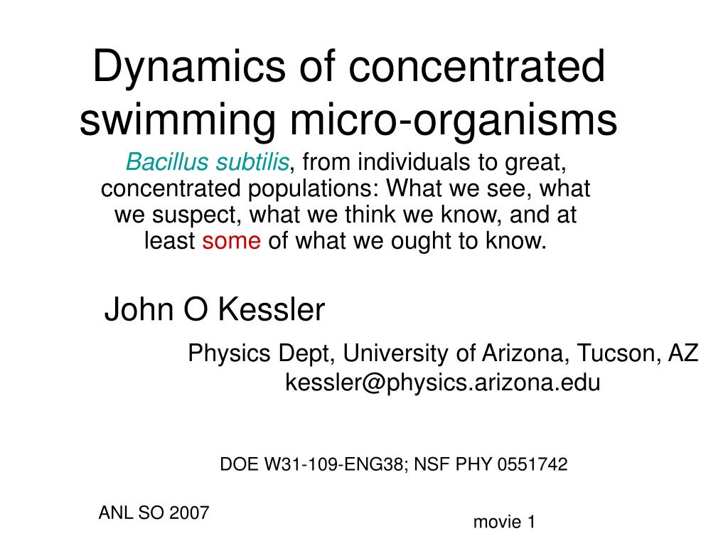 dynamics of concentrated swimming micro organisms l.