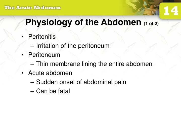 Physiology of the abdomen 1 of 2
