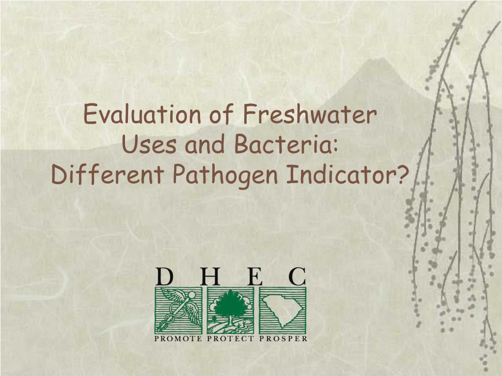evaluation of freshwater uses and bacteria different pathogen indicator l.