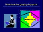 d imensional view grouping of symptoms