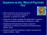 dopamine as the wind of psychotic fire