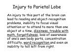 injury to parietal lobe