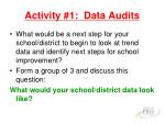 activity 1 data audits