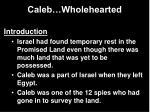 caleb wholehearted
