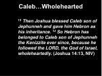 caleb wholehearted11