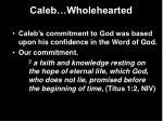 caleb wholehearted15
