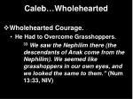 caleb wholehearted21
