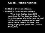 caleb wholehearted22