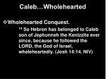 caleb wholehearted24