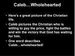 caleb wholehearted3