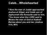 caleb wholehearted4