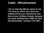 caleb wholehearted7