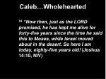 caleb wholehearted8