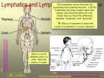 lymphatics and lymphoid organs overview