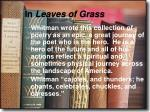 in leaves of grass