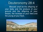 deuteronomy 28 4