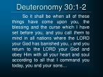 deuteronomy 30 1 2