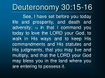 deuteronomy 30 15 16