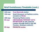 brief evolutionary timetable cont25