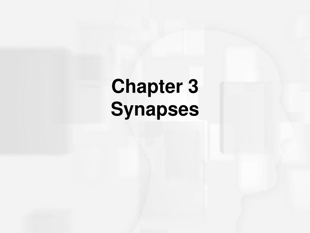 chapter 3 synapses l.