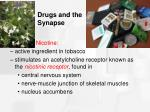 drugs and the synapse31