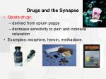 drugs and the synapse32