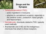 drugs and the synapse34