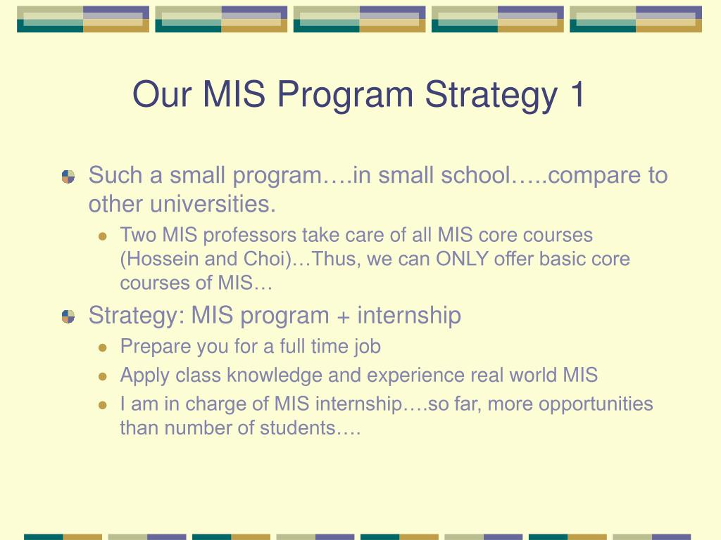 Our MIS Program Strategy 1