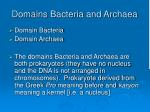 domains bacteria and archaea