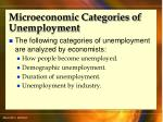 microeconomic categories of unemployment53