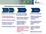 development of animal models